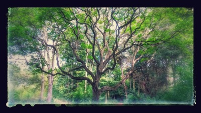 20140823_152145-EFFECTS